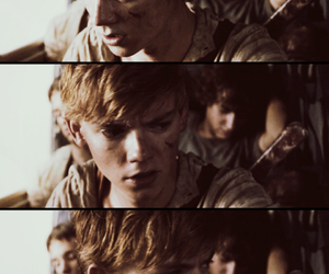 thomas sangster, the maze runner, and book image
