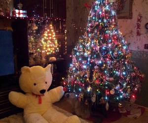 bear, christmas, and lights image
