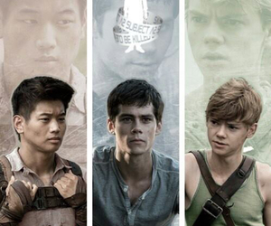 thomas, Minho, and newt image