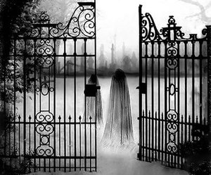 black and white and cemetery image