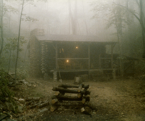 cabin, fog, and forest image