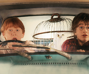 harry potter, ron weasley, and car image