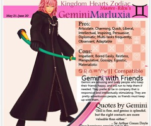 kingdom hearts, zodiac, and marluxia image