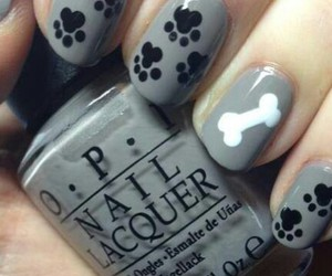 nails, dog, and nail art image