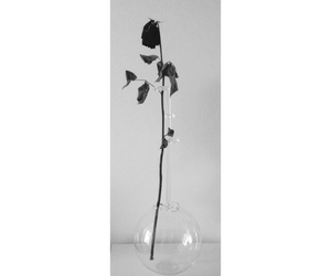 artistic, black and white, and flower image