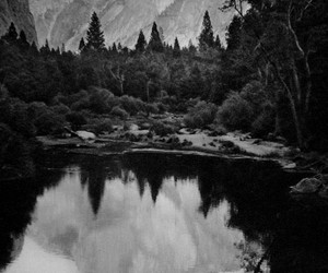 black and white, mountains, and tree image