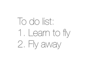 fly, list, and quote image