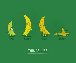 art, banana, and cartoon image