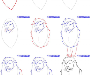 lion and how to draw image