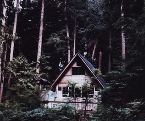 forest, cute, and cottage image