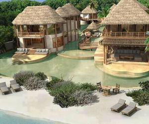 paradise, beach, and Maldives image