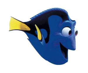 dory, fish, and transparent image