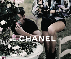 chanel, model, and rose image