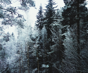 outdoors, wander, and snow image
