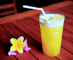 tropical, drink, and flowers image