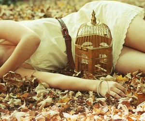 autumn, cage, and girl image