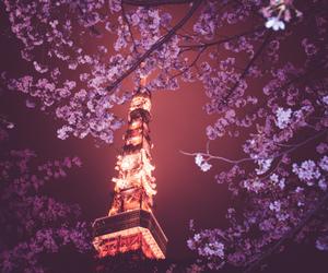 japan, night, and paris image