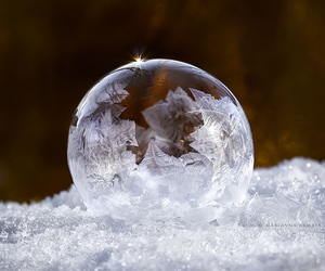 beautiful, bubbles, and photography image
