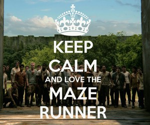 keep calm, the maze runner, and maze runner image