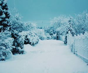 love it, snow, and winter image
