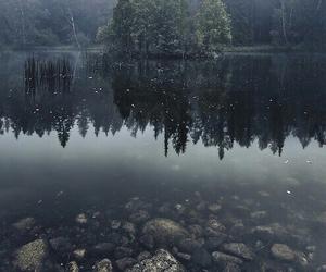 rain, nature, and grunge image
