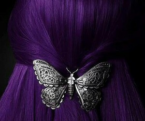 hair, butterfly, and purple hair image