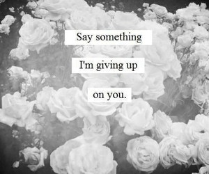 say something, quotes, and song image