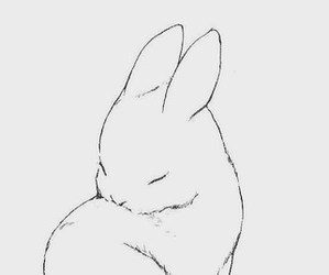 cute, bunny, and art image