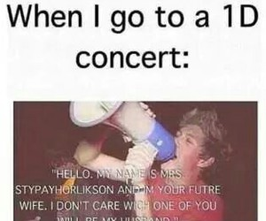 concert, niall horan, and Harry Styles image