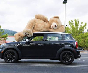 car, love, and teddy bear image