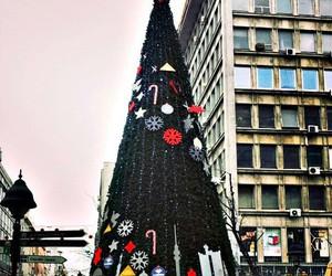 beautiful, Belgrade, and christmas tree image