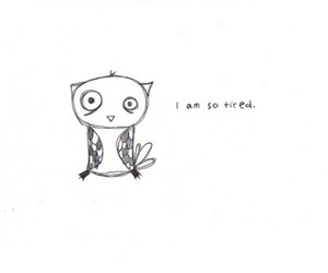 tired, owl, and text image