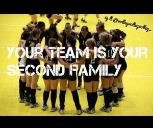 family, team, and volleyball image