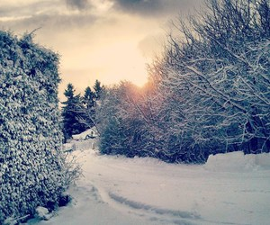 christmas, lovely, and snow image