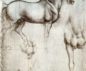 horse, Leonardo da Vinci, and art image