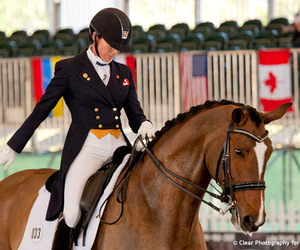 dressage, equestrian, and girl image