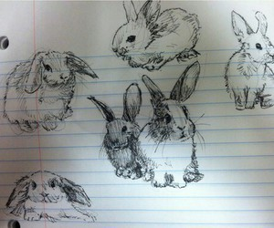 black & white, bunny, and drawing image