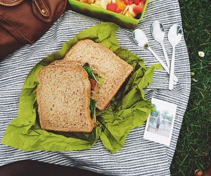 food, grass, and picnic image