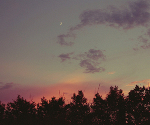 sky, forest, and moon image