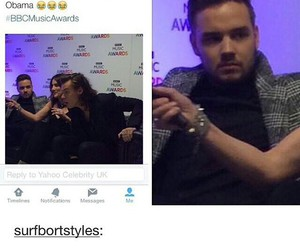 liam payne and Harry Styles image