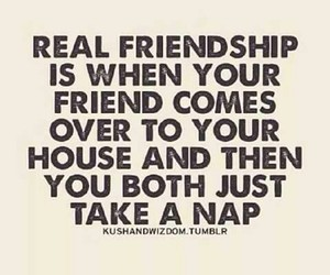 friendship, nap, and friends image