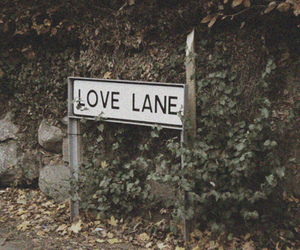 love, photography, and lane image