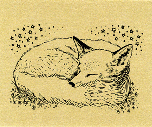 fox, art, and drawing image
