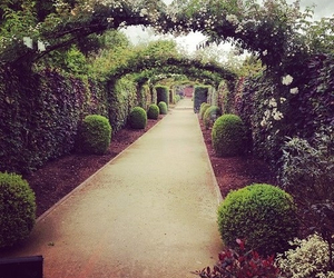 garden, path, and cute image