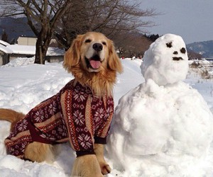 doggie, snowman, and friends:-d image