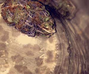 bud, weed pictures, and trippy image
