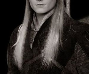 Legolas and the lord of the rings image