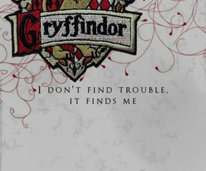 gryffindor, harry potter, and gryf image