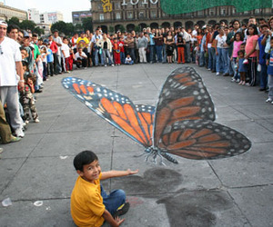 butterfly, julian, and beever image