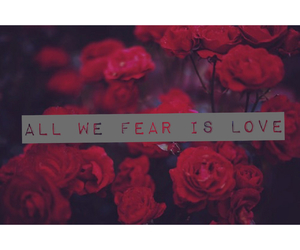 fear, flowers, and roses image